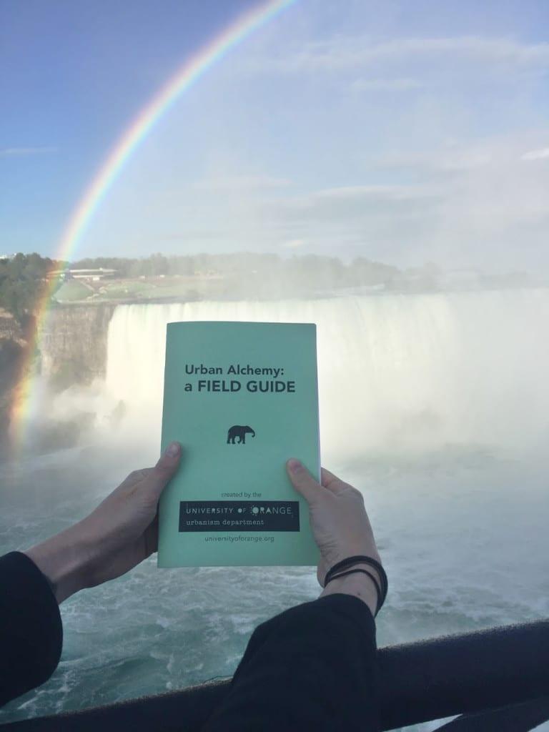 FieldGuide_NiagaraFalls